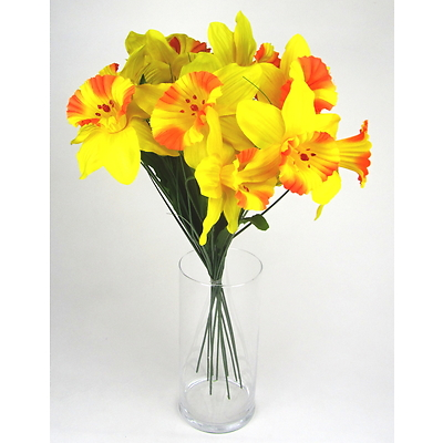 Narcisy svazek 10 ks oranžové