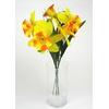 Narcisy svazek 5 ks oranžové