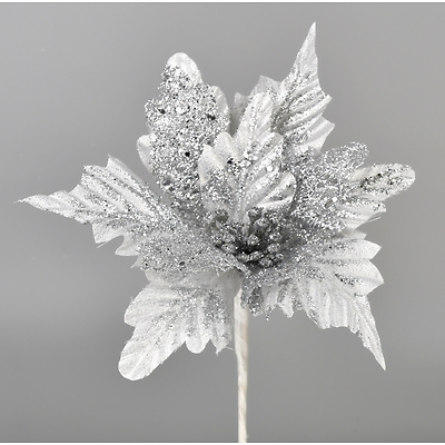 Poinsetie třpytivá - stříbrná