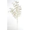 Větvička bílá