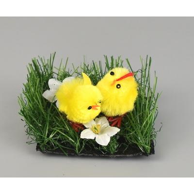 Kuřátka v trávě