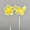 Kytička a motýl zápich žlutý