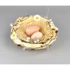 Hnízdo s vajíčky
